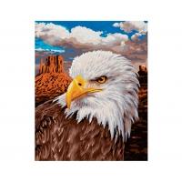 Картина по номерам Schipper Белоголовый орлан, 24х30 см
